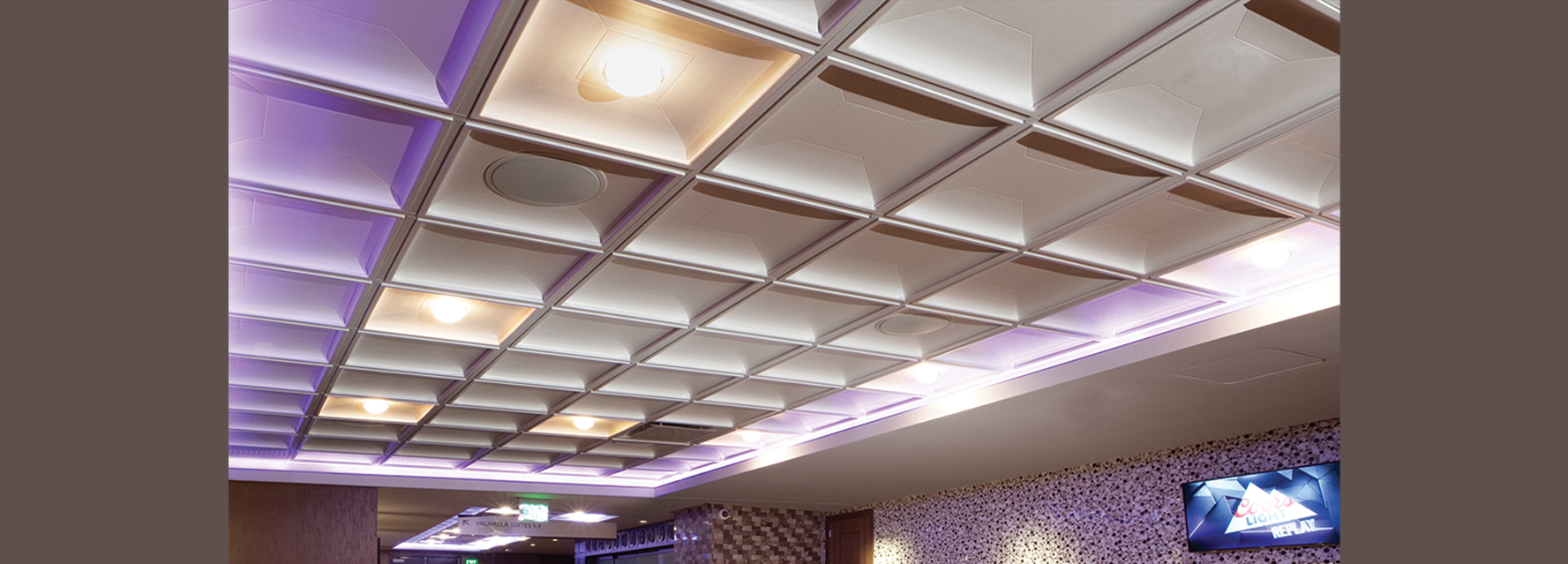 Specialty Plaster Ceiling Tile